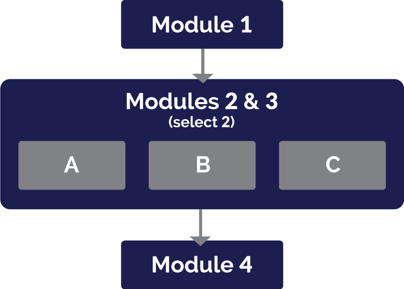 CSTD Modules Diagram